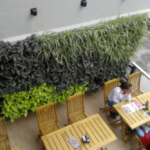 Foto 7: Cafe Martinez. Tucumán