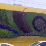 Foto 6: Hospital de Niños